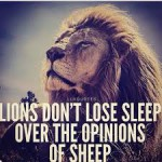 Lions and sheep